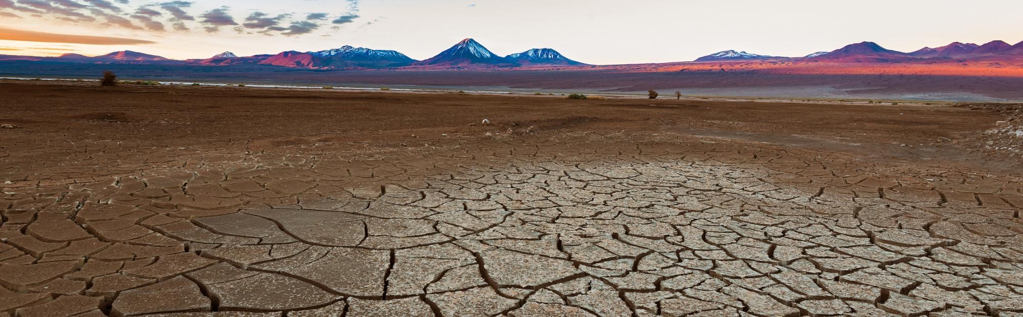 Atacama desert Mediviatges