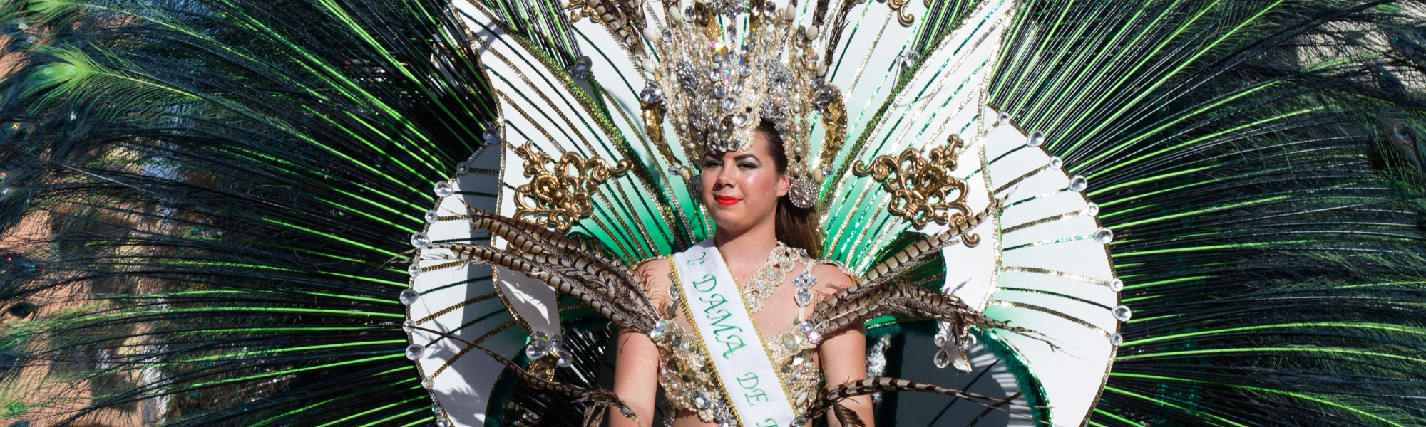 Carnaval Santa Cruz de Tenerife (España)